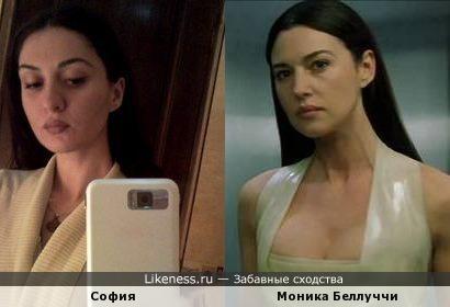 София похожа на Монику Белуччи