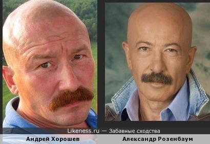 Актер и певец похожи