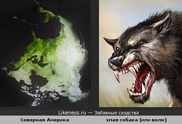 Северная Америка похожа на злую собаку