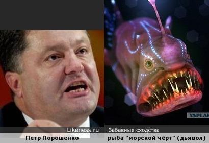 """Петр Порошенко похож на """"морского чёрта"""""""