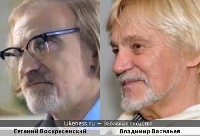 Владимир Васильев и Евгений Воскресенский