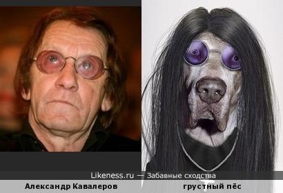 Александр Кавалеров и грустный пёс