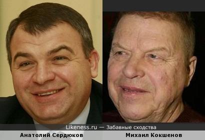 Анатолий Сердюков и Михаил Кокшенов