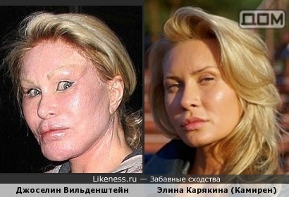 Элина Карякина похожа на Джоселин Вильденштейн