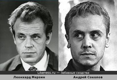 Леонхард Мерзин и Андрей Соколов похожи