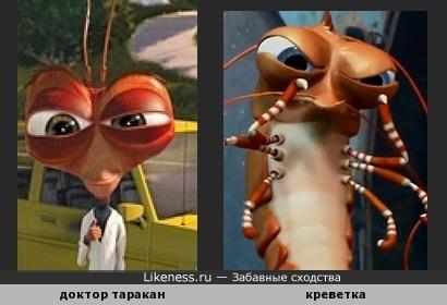 Доктор Таракан похож на Креветку