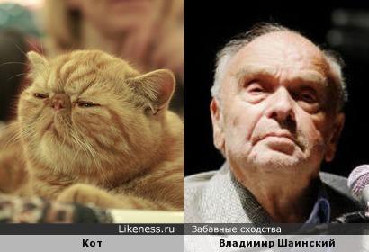 Этот кот чем-то напомнил Шаинского