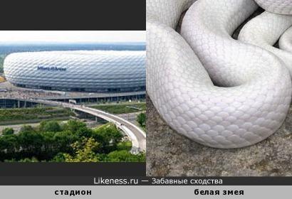 Стадион Альянц Арена в Мюнхене похож на гигантскую белую змею