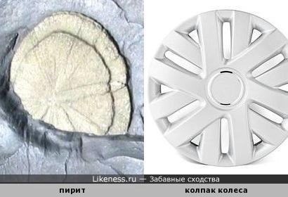 Найдено доказательство существования в древней цивилизации автомобиля - окаменевший колпак колеса! )))