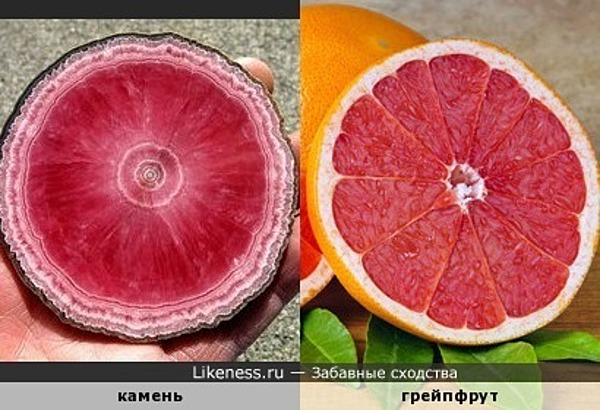 Родохрозит на срезе напоминает грейпфрут