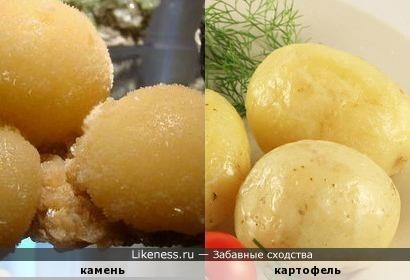 Картошечка отварная, такая полезная, такая вкусная, вот только такая твердая...