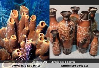 Подводная гончарная мастерская