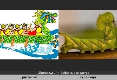 Лодка-дракон на рисунке и зеленая гусеница