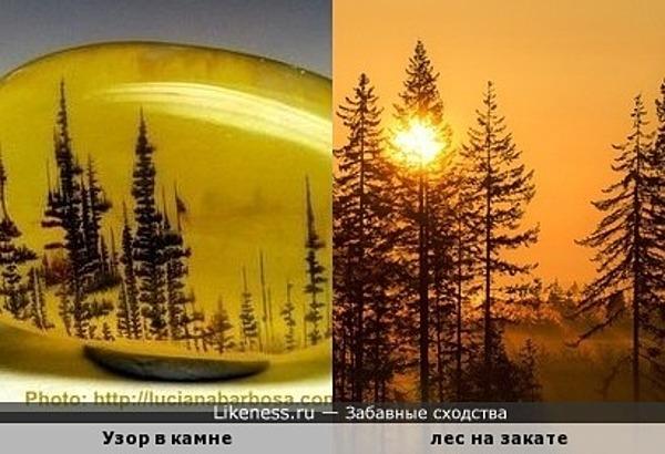 Узор в камне напоминает лес на закате