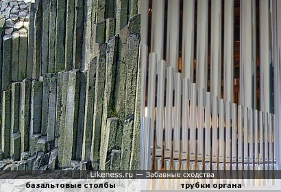 Первобытный орган
