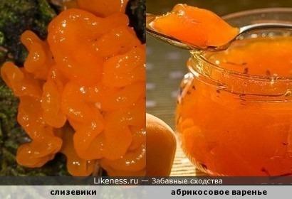Ням-ням! Вкуснотища! Угощайтесь ))