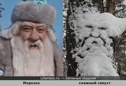 Морозко на заснеженном дереве )