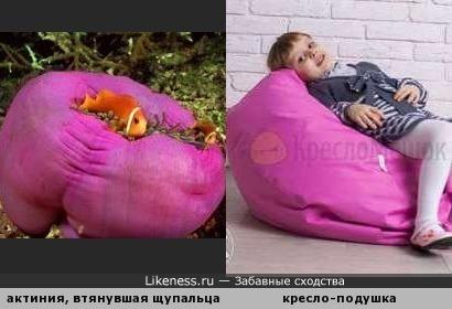 Кресло-подушка для рыбок