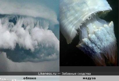 Облако похоже на гигантскую медузу
