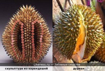 Скульптурное нечто из карандашей похоже на плод дуриана