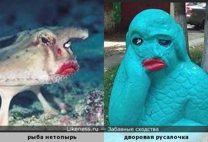А русалочка-то с натуры слеплена! )