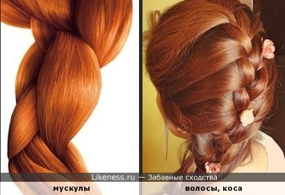 Стилистическое изображение мускулов напоминает волосы, собранные в косу