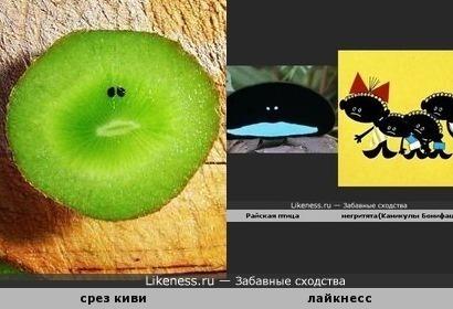 Навеяло... ))