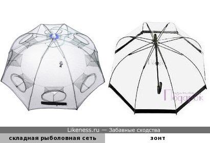 Зачем рыбе зонтик?