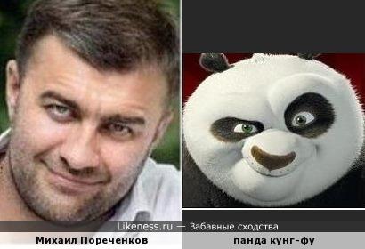 Михаил Пореченков и панда кунг-фу