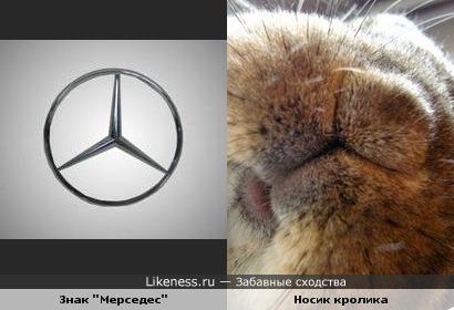 "Знак ""Мерседес"" похож на носик кролика"