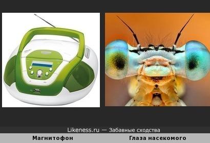 Магнитофон и Глаза насекомого