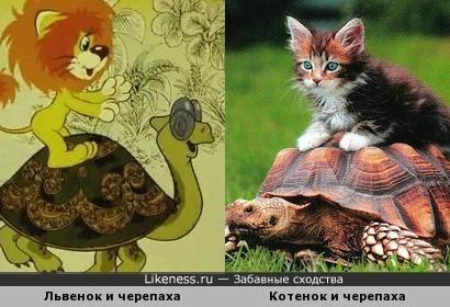 Львенок и Котенок на черепахе