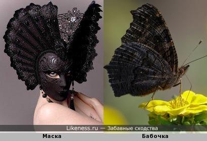 Маска и бабочка