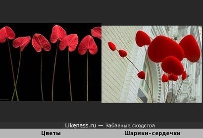 Цветы и шарики-сердечки