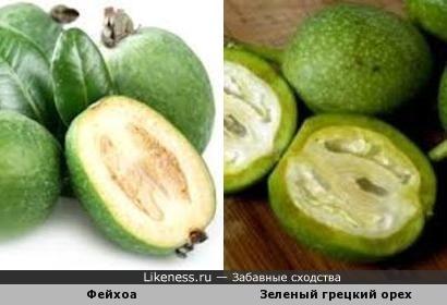 Фейхоа и зеленый грецкий орех
