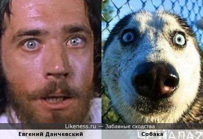 Евгений Данчевский и собака