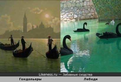 Гондольеры и лебеди