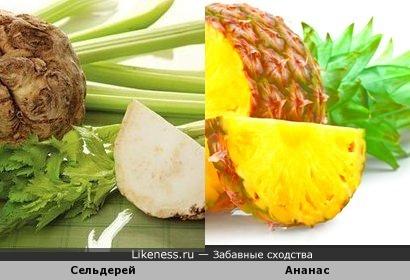 Сельдерей и ананас
