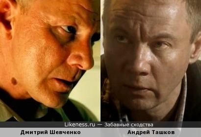 Дмитрий Шевченко и Андрей Ташков