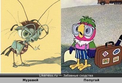 Муравей и попугай Кеша