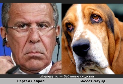 Сергей Лавров и бассет-хаунд