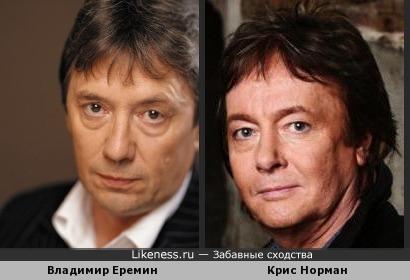 Владимир Еремин и Крис Норман похожи