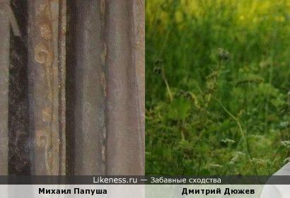 Михаил Папуша похож на Дюжева Дмитрия