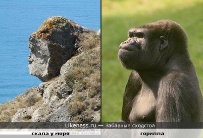 природная скала похожа на примата