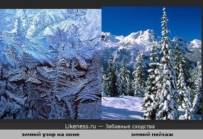 рисунок на окне похож на зимний лес