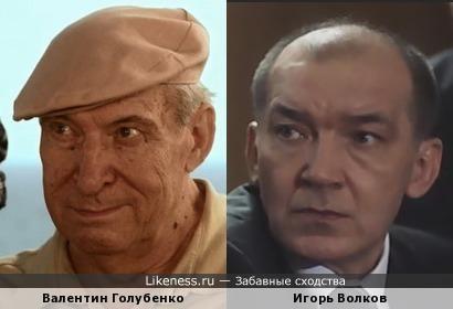 Валентин Голубенко похож на Игоря Волкова