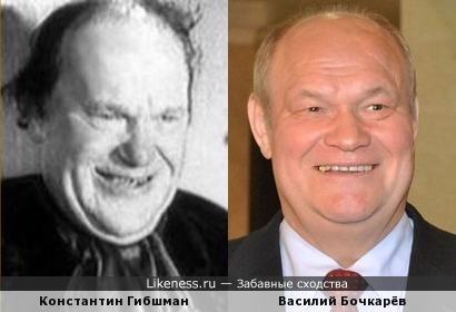 Василий Бочкарёв похож на Константина Гибшмана