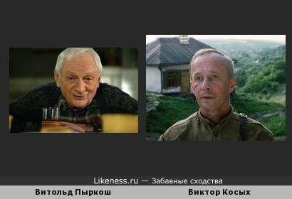 Витольд Пыркош похож на Виктора Косых