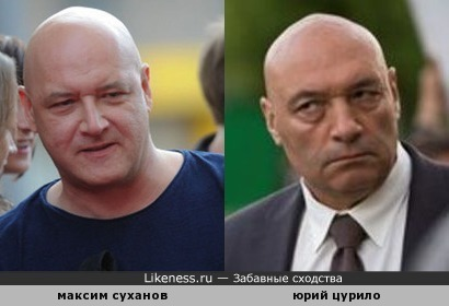 суханов и цурило похожи