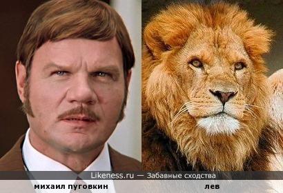 пуговкин похож на льва